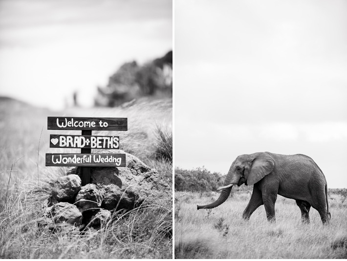Gondwana_Game_Reserve_Catherine_Mac_Photography_Safari_Wedding_South_Africa_2